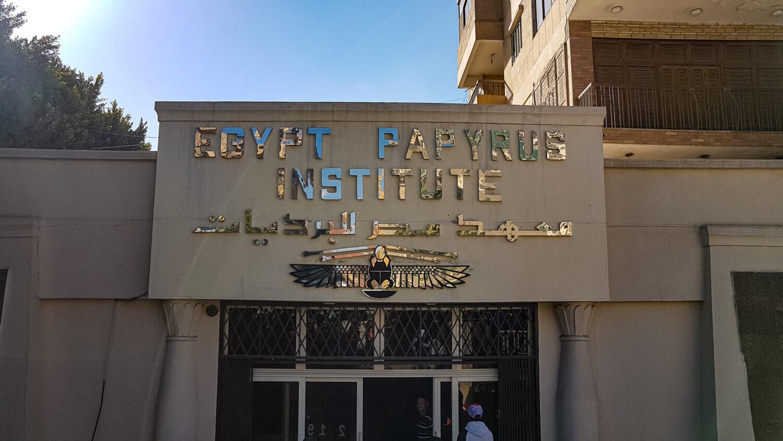 Institutul Papirusului, Cairo